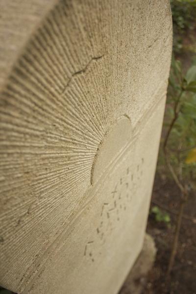 Der Thüster Kalkstein ist ein einheimisches Gestein. Er wird am Thüster Berg, ca. 40 km südlich von Hannover, gebrochen.