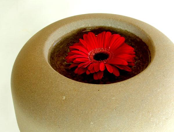 Blume in Steinschale